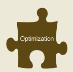 Do you need optimization services?  What are they?
